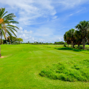s-florida_winter-turf-management_ameriturf